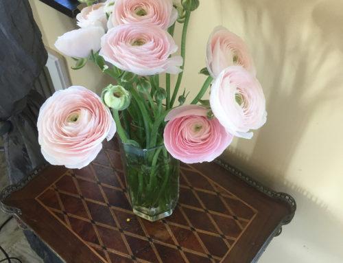 Supermercati d'Italia, ditelo coi fiori (regalandoceli) ANDRÀ TUTTO BENE!